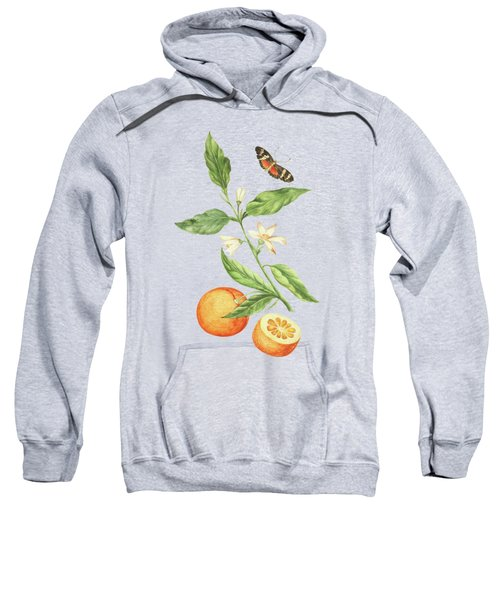 Branch With Blossoming Orange Blossom, Oranges And Butterfly By Cornelis Markee 1763 Sweatshirt
