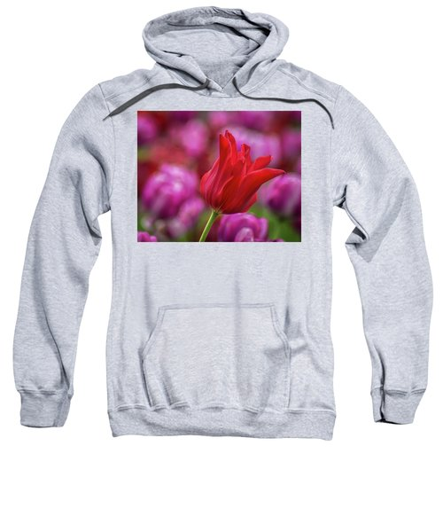 Sweatshirt featuring the photograph Brazenly Delicate by Bill Pevlor