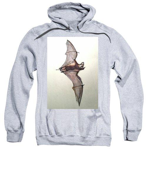 Brazilian Free-tailed Bat Sweatshirt