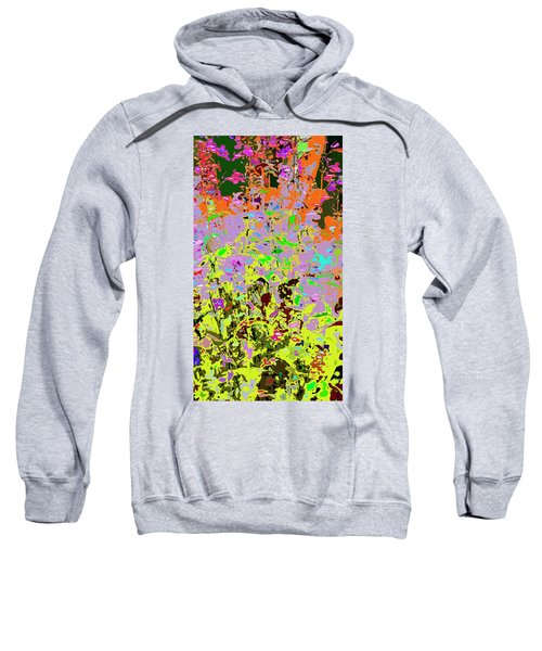 Breathing Color Sweatshirt
