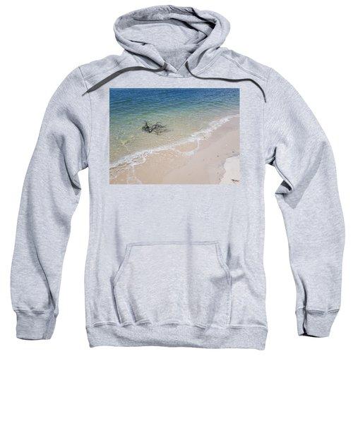 Bribie Branches 2 Sweatshirt