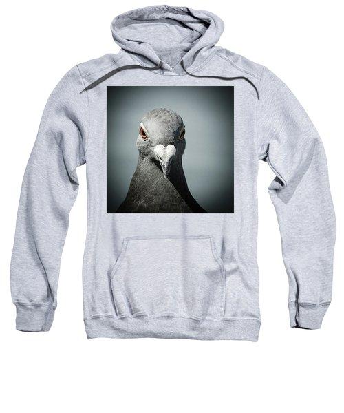 Brieftaube Von Mandy Tabatt Auf Sweatshirt
