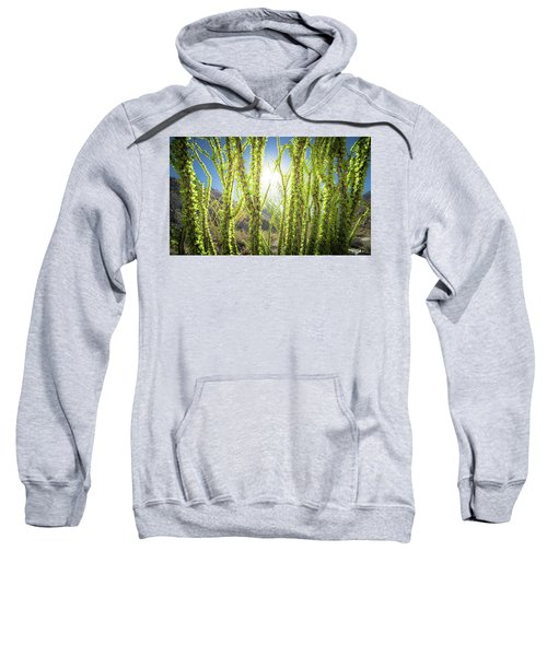 Bright Light In The Desert Sweatshirt