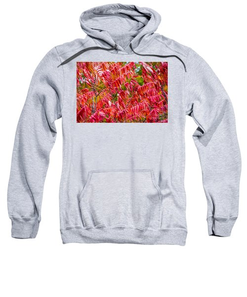 Bright Red Leaves Sweatshirt