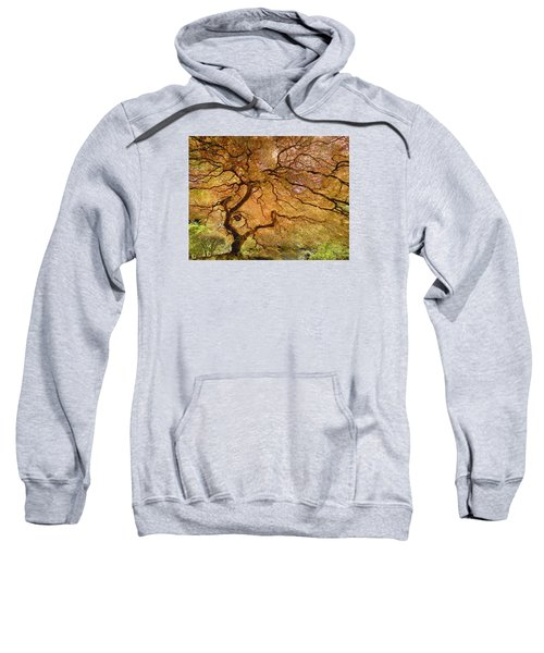 Brilliant Japanese Maple Sweatshirt