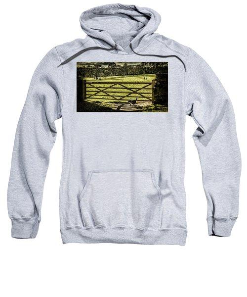 Bringing It Back Sweatshirt