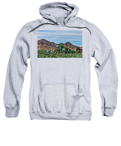 Broccoli Harvest Sweatshirt by Robert Bales