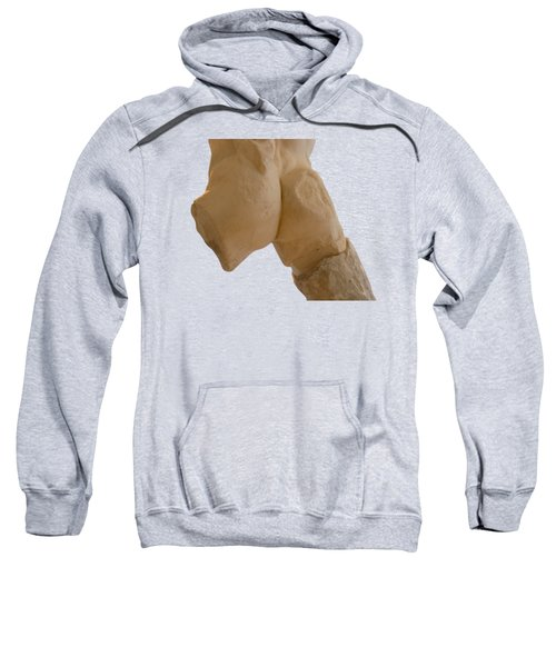 Broken Naked Greek Male Statue From Back Sweatshirt