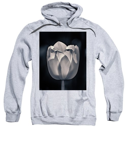 Sweatshirt featuring the photograph Brooding Virtue by Bill Pevlor