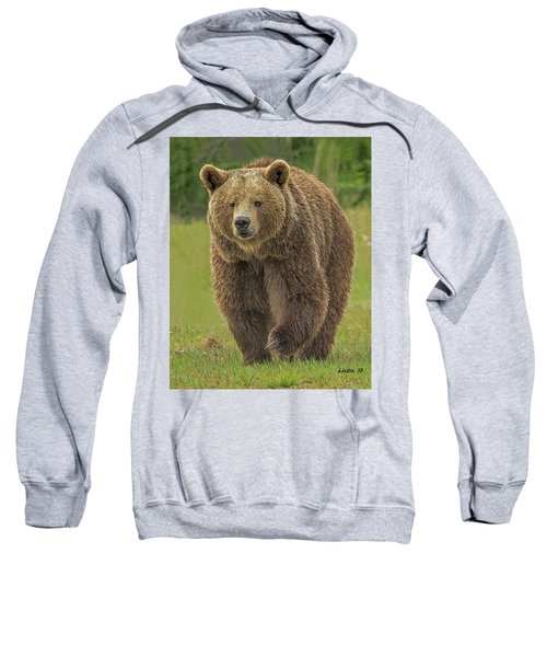Brown Bear 1 Sweatshirt