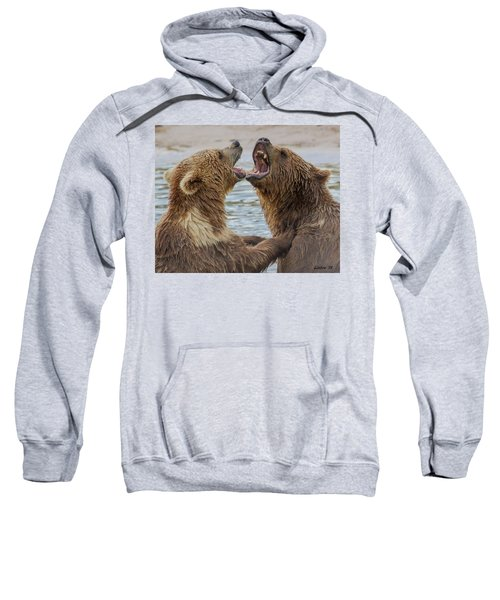 Brown Bears4 Sweatshirt