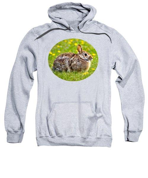 Brown Bunny In Green Grass Sweatshirt by Christina Rollo
