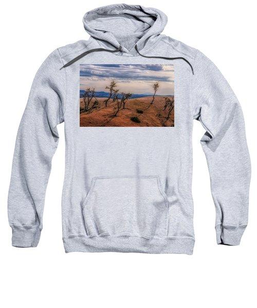 Bryce Landscape Sweatshirt