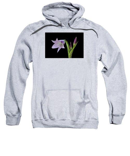 Budding Lily Sweatshirt
