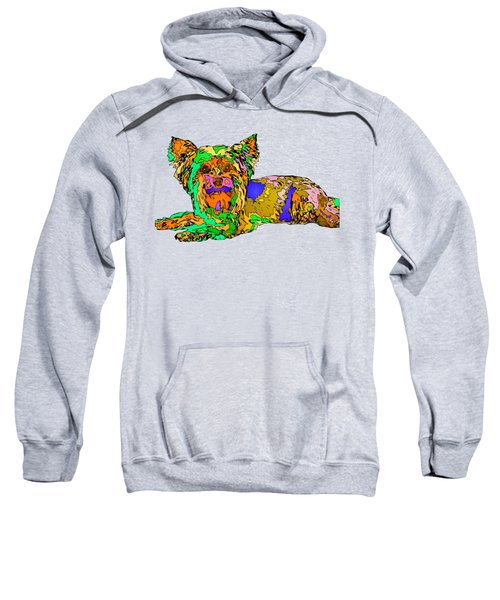 Buddy. Pet Series Sweatshirt