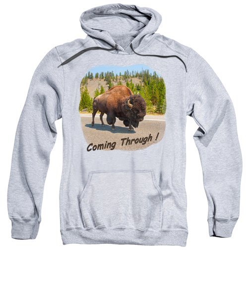 Buffalo Sweatshirt by John M Bailey