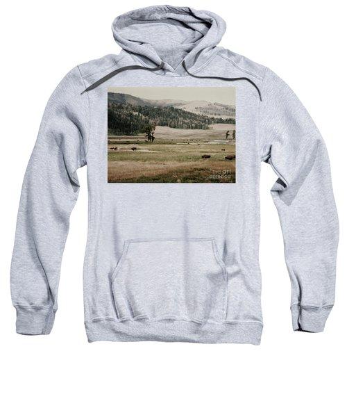 Buffalo Roam Sweatshirt