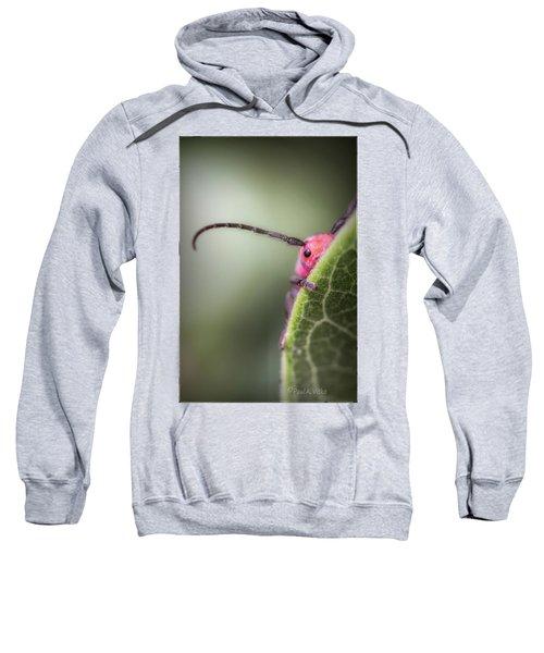 Bug Untitled Sweatshirt