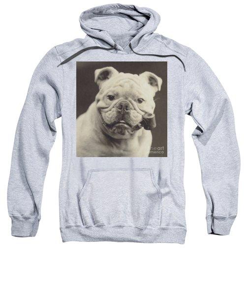Bulldog Smoking A Pipe Sweatshirt