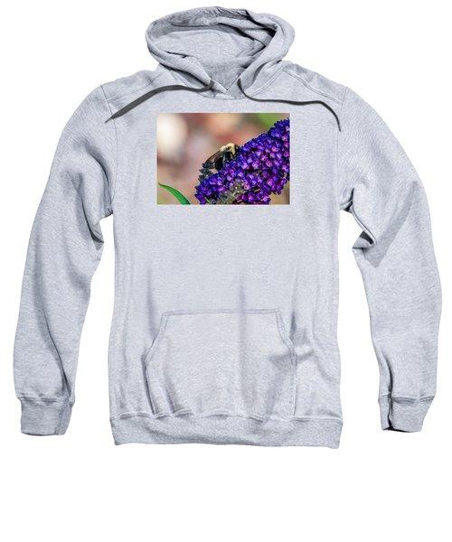Bumble Bee Sweatshirt