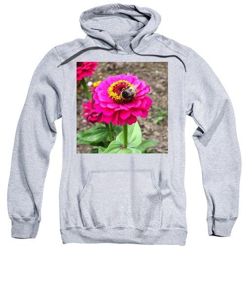 Bumble Bee On Pink Flower Sweatshirt