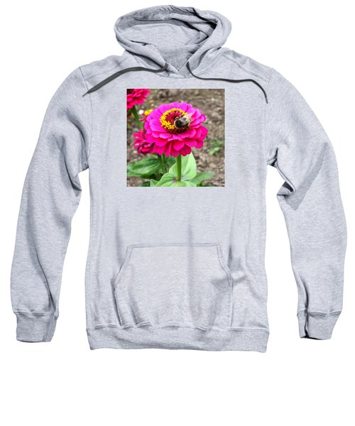 Bumble Bee On Pink Flower Sweatshirt