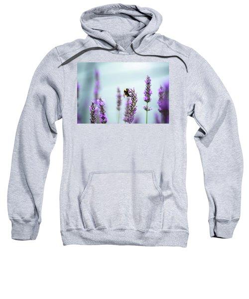 Bumblebee And Lavender Sweatshirt