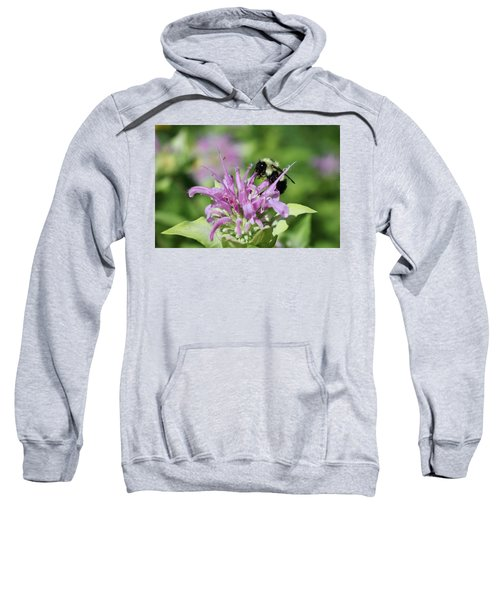 Bumblebee On Bee Balm Sweatshirt