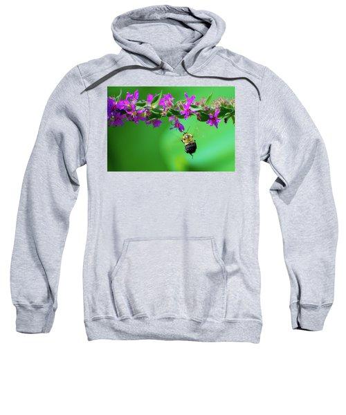 Bumblebee To Nectar Sweatshirt
