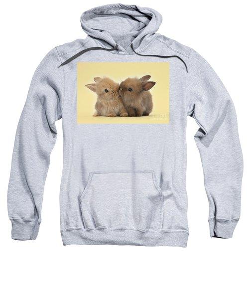 Bunny Kisses Sweatshirt