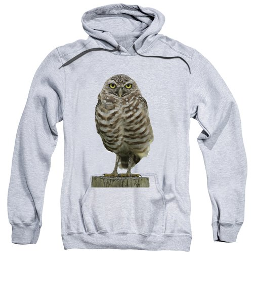 Burrowing Owl Lookout Sweatshirt
