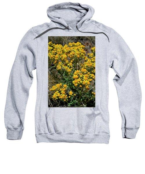 Burst Of Yellow Sweatshirt