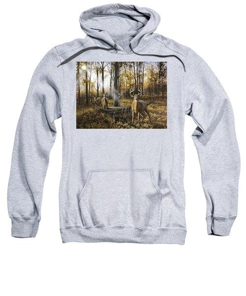 Busted Sweatshirt