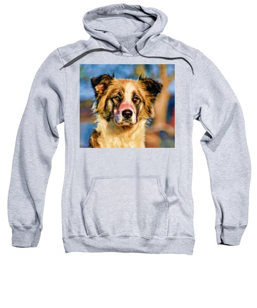 Buster Dog Viewing The Sunset Sweatshirt