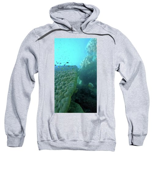 Sweatshirt featuring the photograph Butterfly Fish  by Debbie Cundy