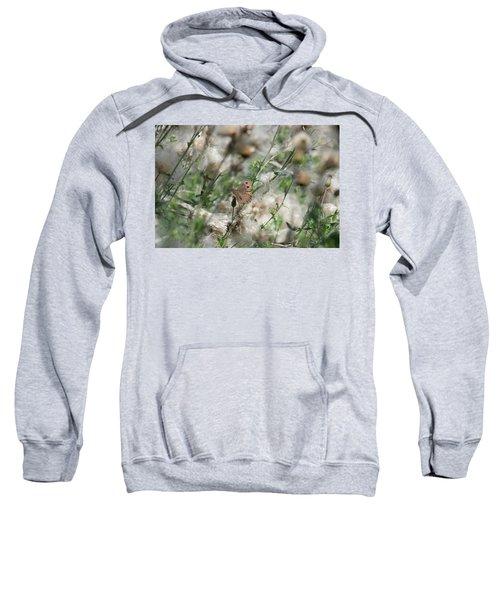 Butterfly In Puffy Seed Heads Sweatshirt