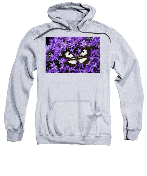 Butterfly On Campanula Get Mee Sweatshirt
