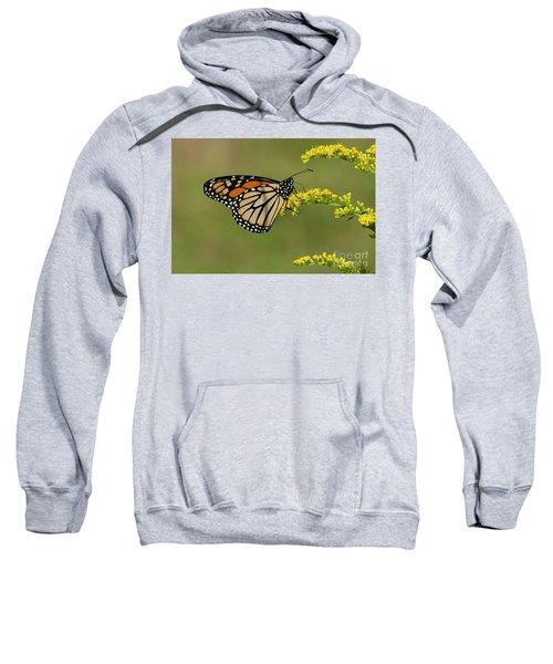 Butterfly On Flowers Sweatshirt