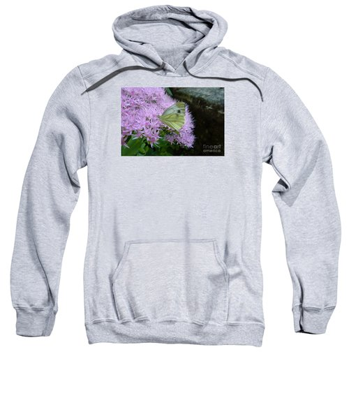 Butterfly On Mauve Flowers Sweatshirt