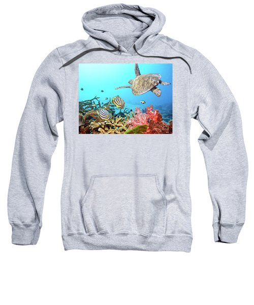 Butterflyfishes And Turtle Sweatshirt