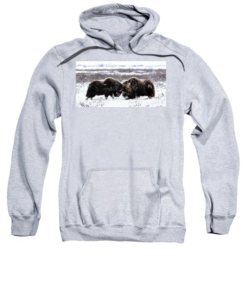 Butting Heads Sweatshirt