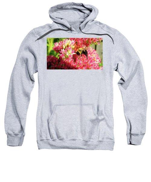 Buzy Bee Sweatshirt