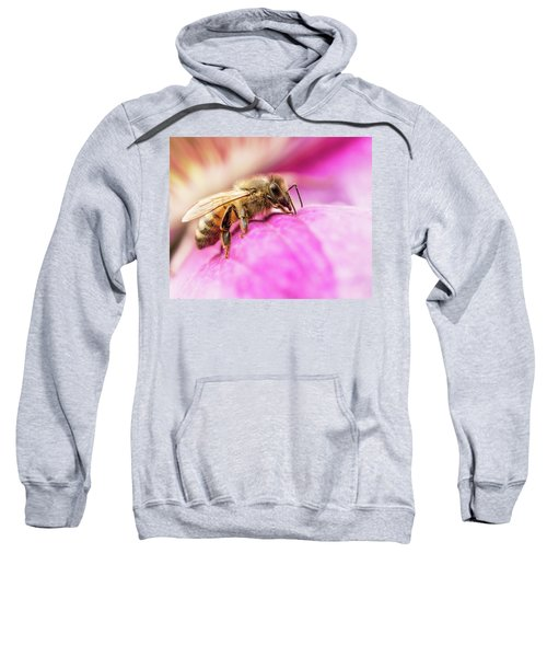Buzz Sweatshirt
