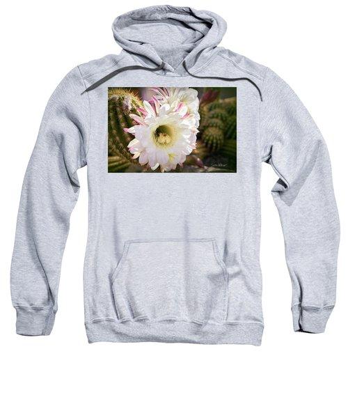 Cactus Bloom 2 Sweatshirt