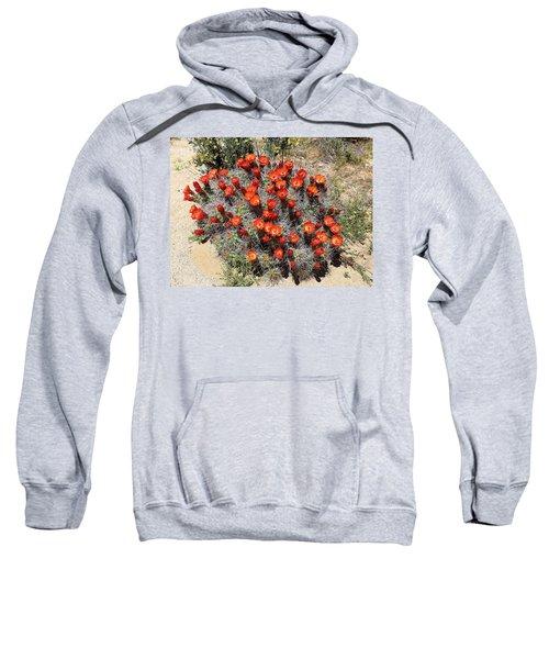 Cactus Bloom In Jtnp Sweatshirt