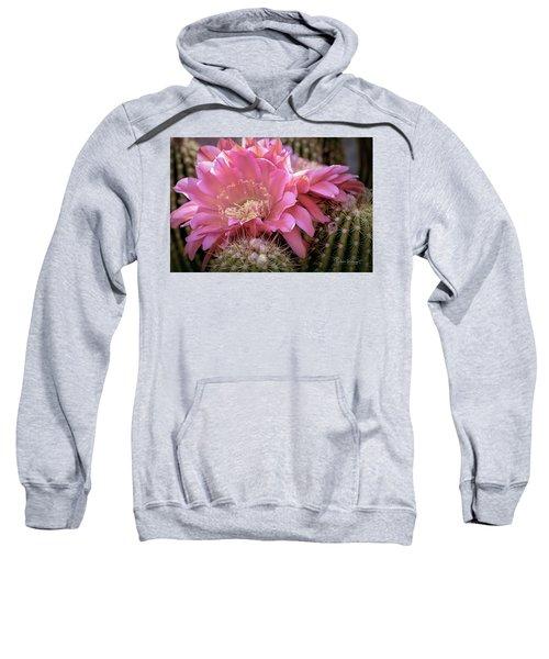 Cactus Bloom Sweatshirt