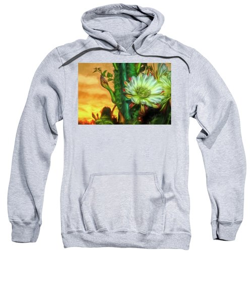 Cactus Flower At Sunrise Sweatshirt