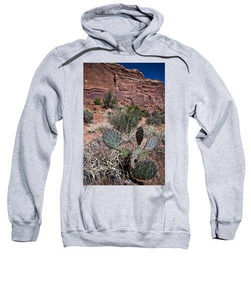 Cactus In Arches Nat'l Park Sweatshirt