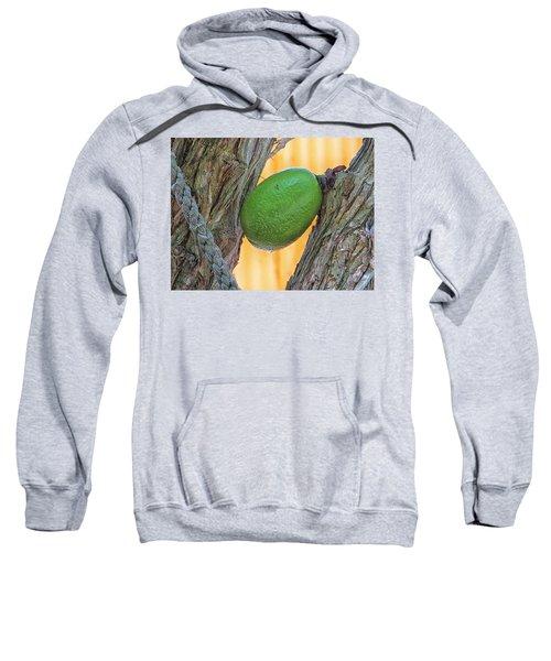 Calabash Fruit Sweatshirt