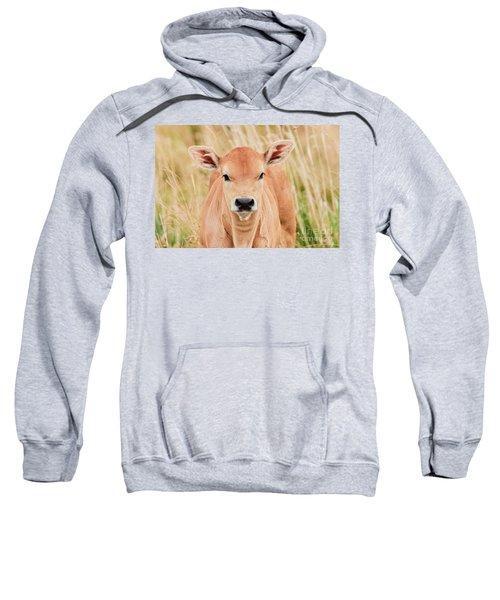 Calf In The High Grass Sweatshirt